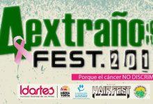 Festival de festivales 2014
